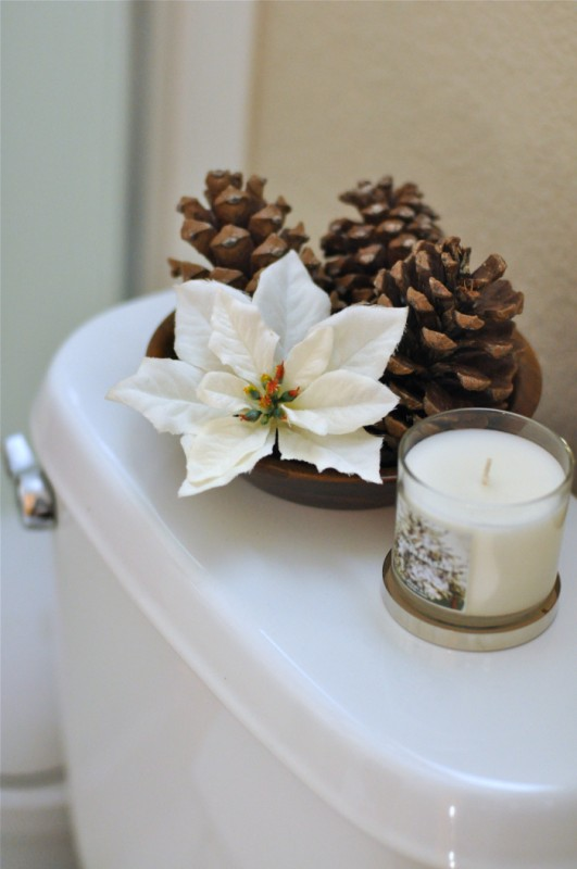 A little holiday potty training and a coupon for Bathroom xmas decor