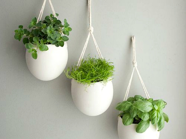 White Hanging Ceramic Herb Planters. Chalkboard Paint Indoor Herb Planters