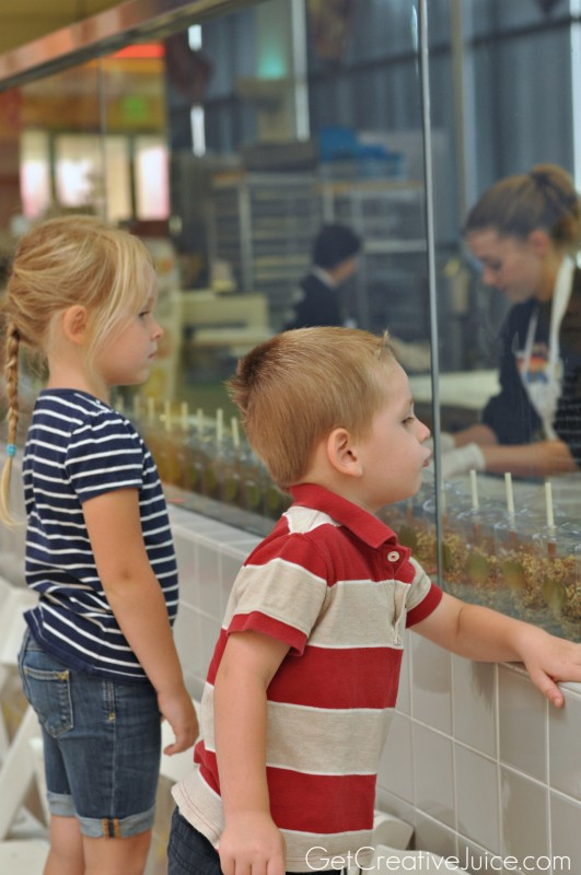 Jelly Belly Factory Trip with Kids