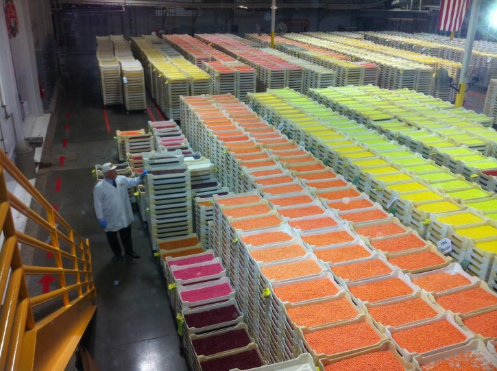Jelly Belly Factory Work Room