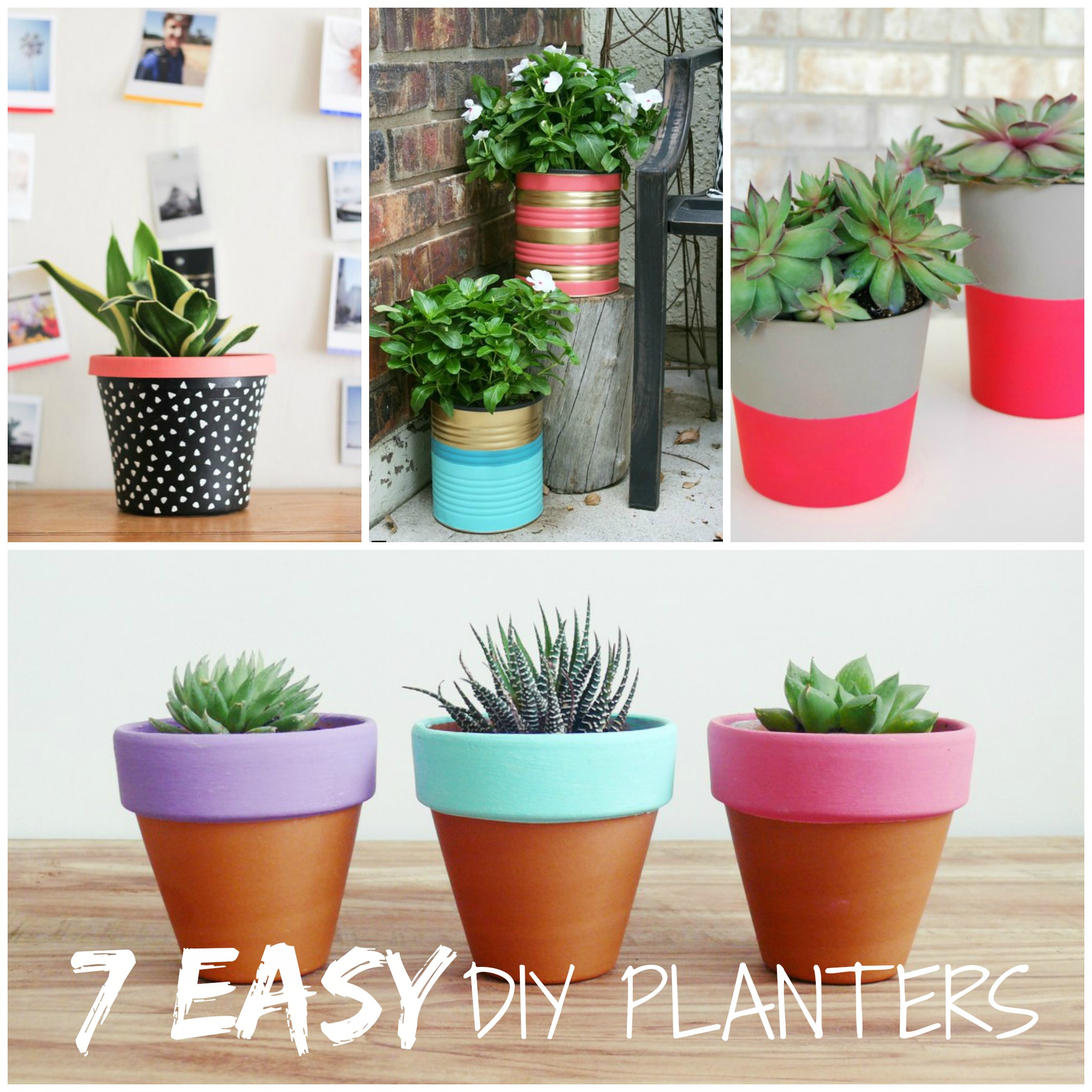 Trending Tuesday: 21 Easy DIY Planters - Creative Juice | title