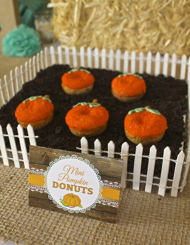 Rustic Fall Little Pumpkin Baby Shower, Burlap sack party favors, mini donut pumpkins in garden